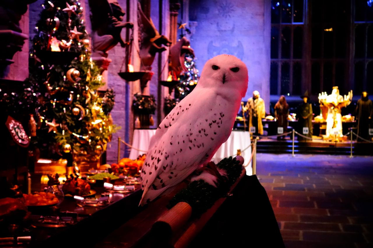 Hogwarts Christmas Feast - The Londoner