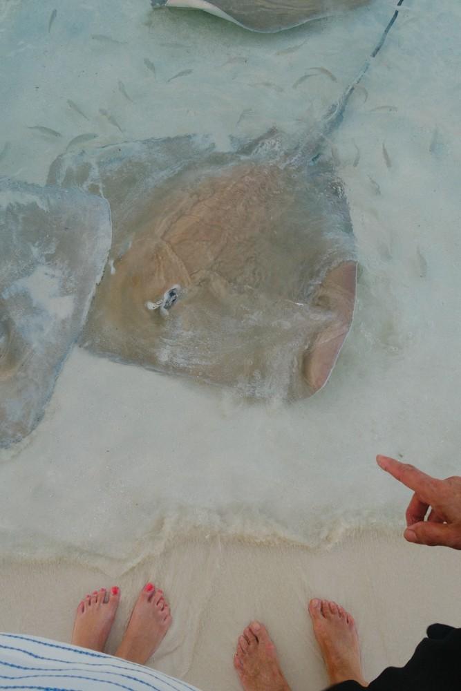Huvafen Fushi Maldives -40