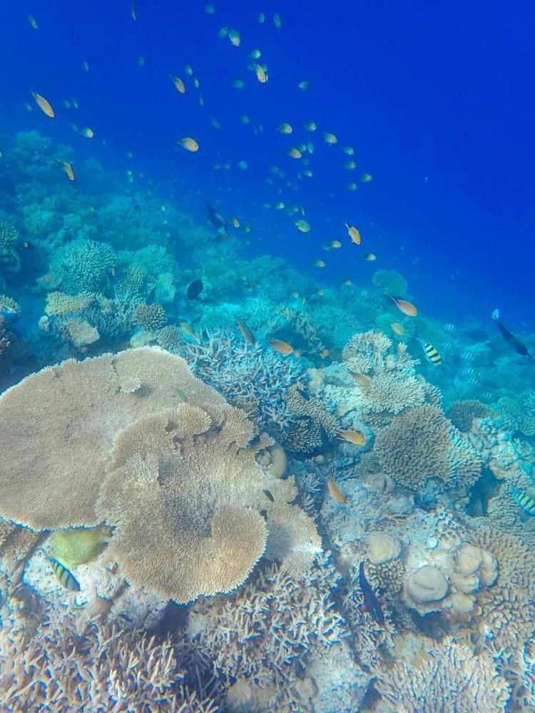 Huvafen Fushi Maldives -42