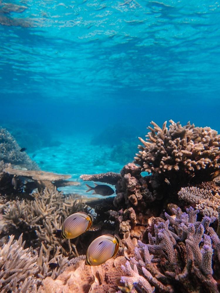Huvafen Fushi Maldives -58