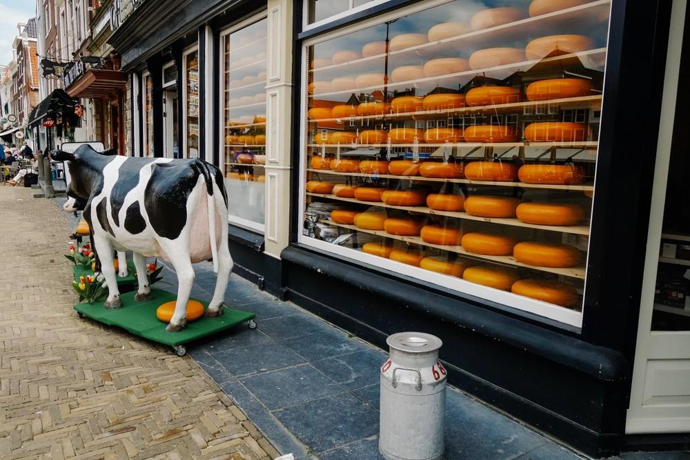 Delft Holland-9
