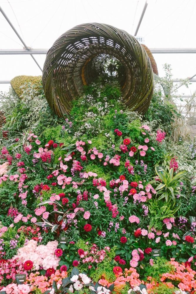 chelsea flower show 2015-30