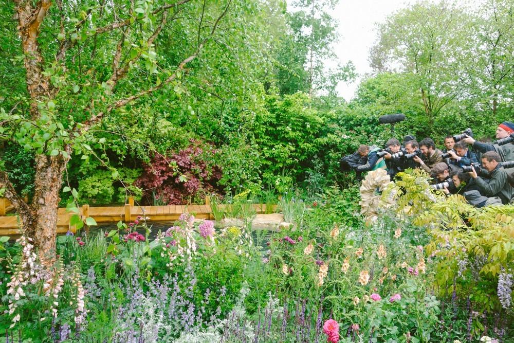 chelsea flower show 2015-33