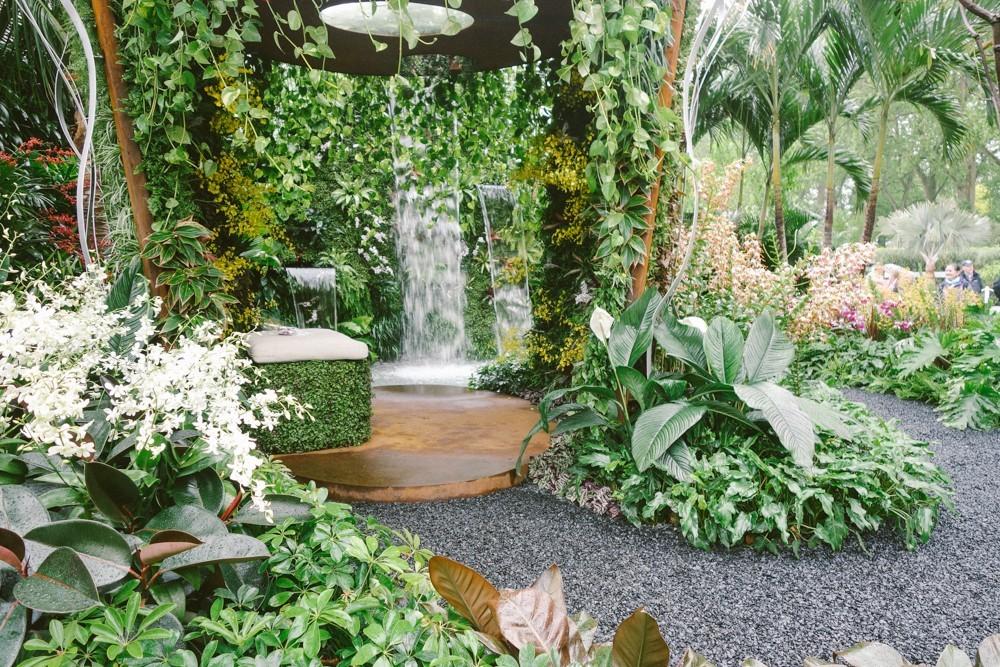 chelsea flower show 2015-5
