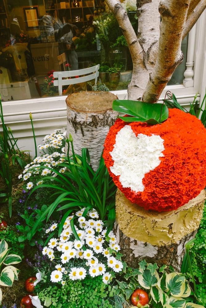 chelsea flower show 2015-79