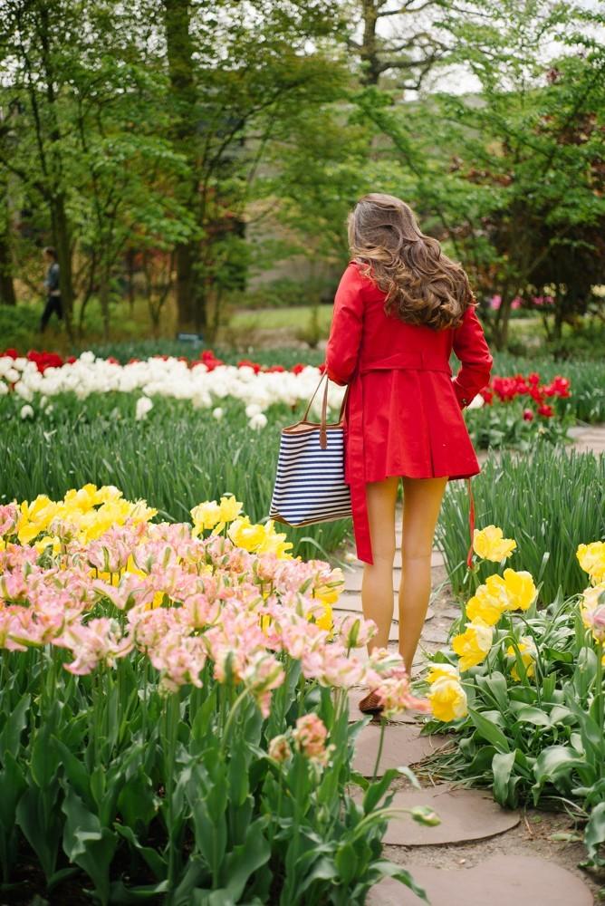 keukenhof tulip gardens-1