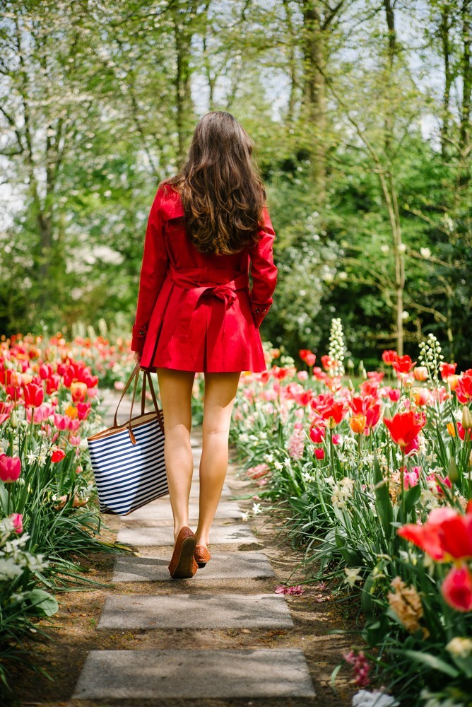 keukenhof tulip gardens-24