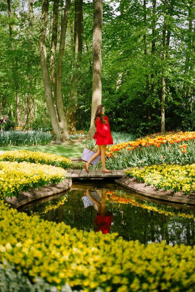 keukenhof tulip gardens-27