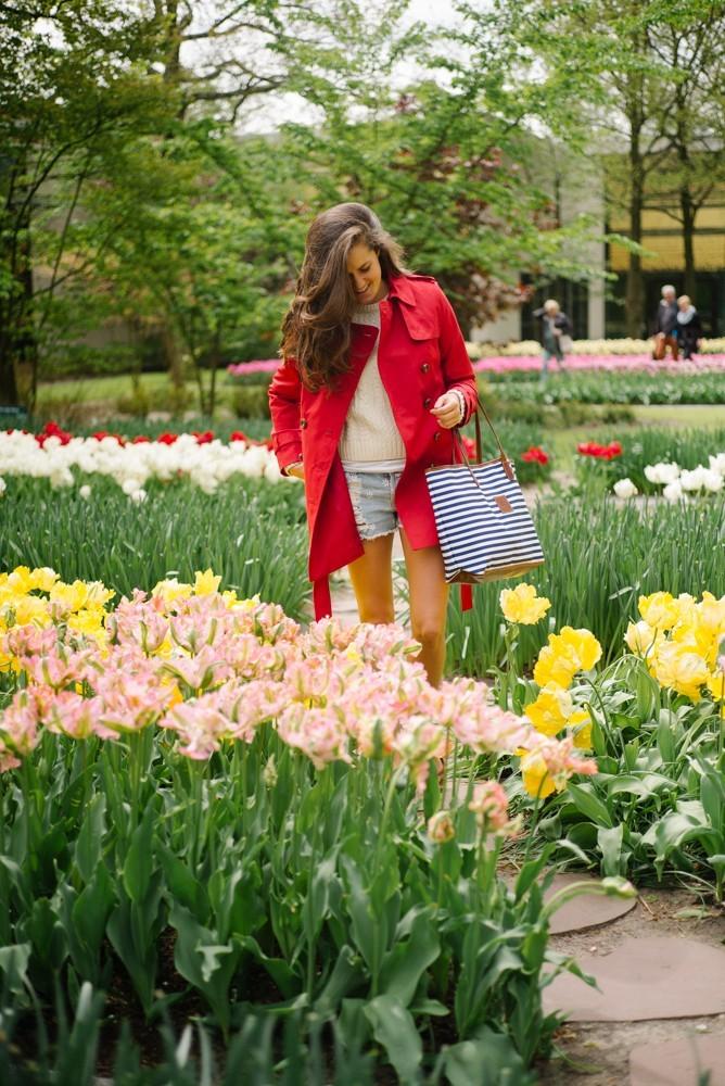 keukenhof tulip gardens-3