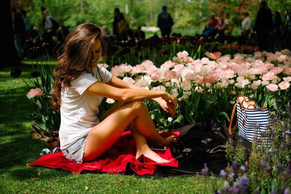 keukenhof tulip gardens-31