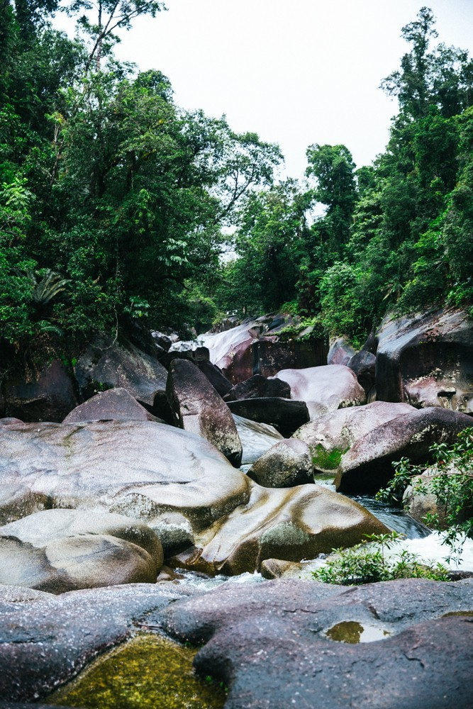 Chasing Waterfalls Queensland-15