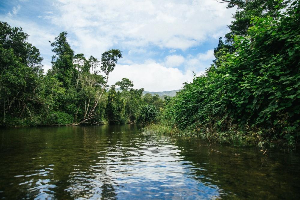 Chasing Waterfalls Queensland-28