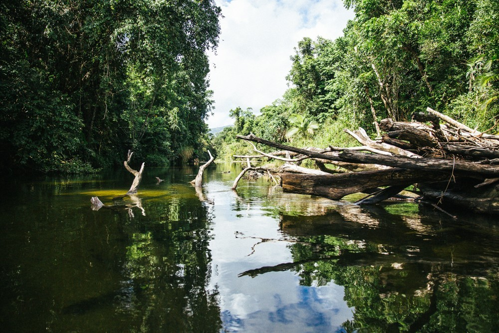 Chasing Waterfalls Queensland-46