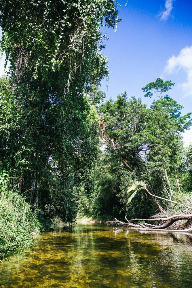 Chasing Waterfalls Queensland-48