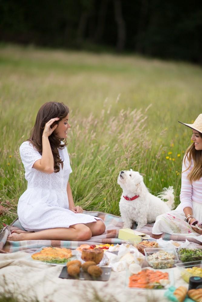 kenwood house picnic-17