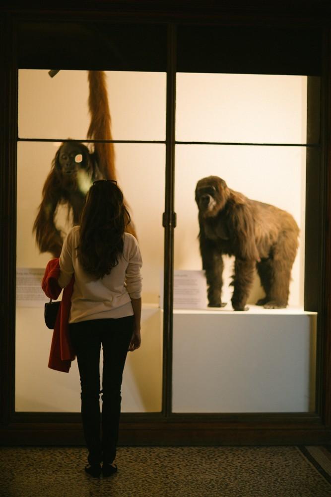 Natural History Museum London-28