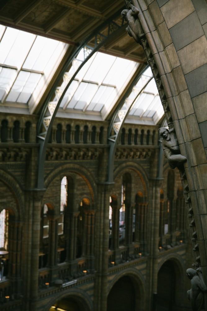 Natural History Museum London-31