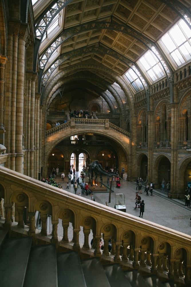 Natural History Museum London-33