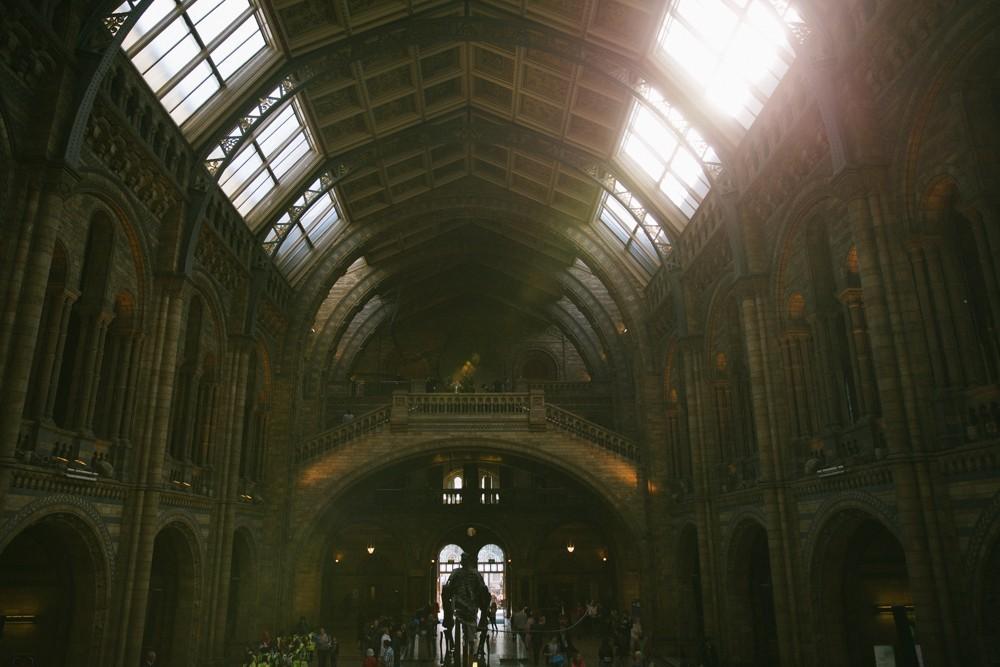 Natural History Museum London-35
