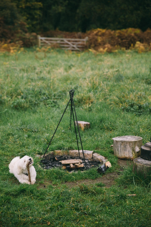 Shephard Hut Camping-15