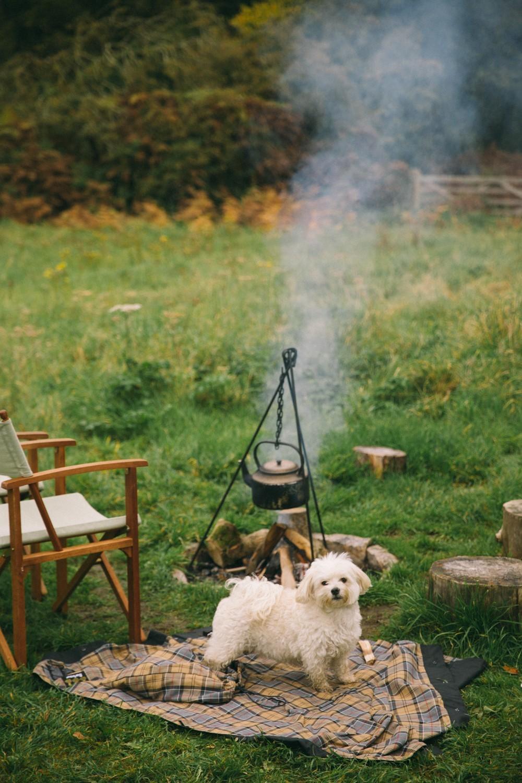 Shephard Hut Camping-18