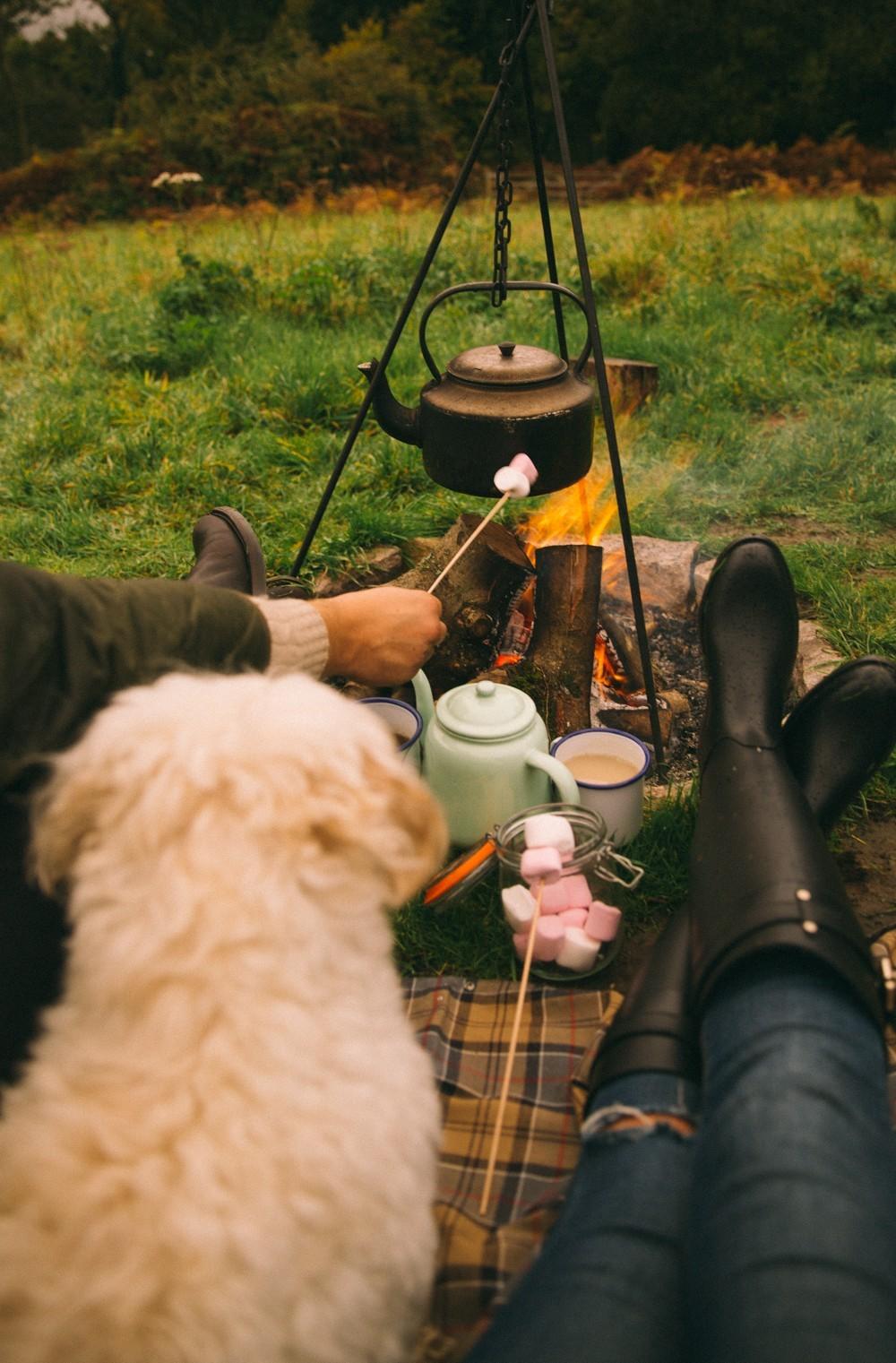 Shephard Hut Camping-29