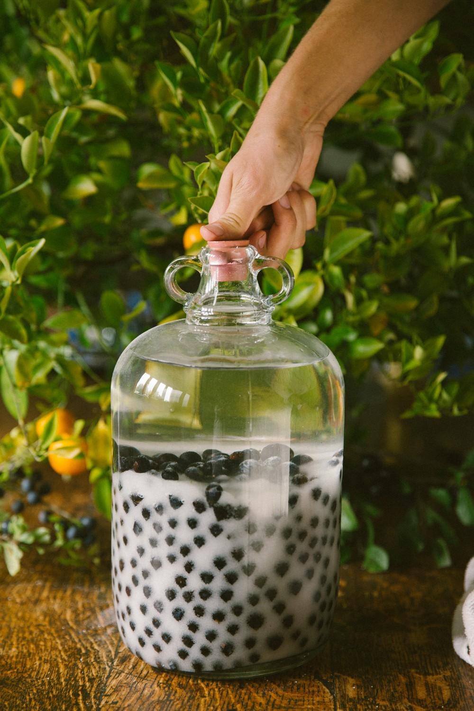 Sloe gin recipe-65