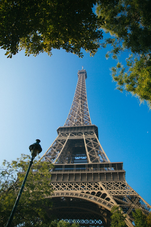 eiffel tower picnic-11