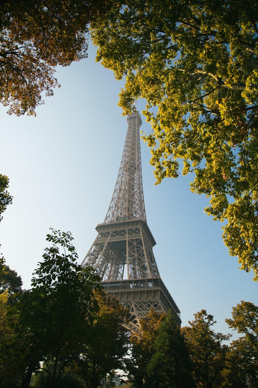 eiffel tower picnic-28