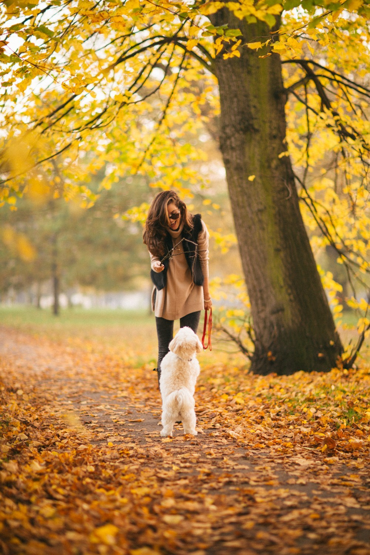 Autumn in London-12
