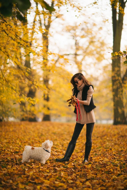Autumn in London-2