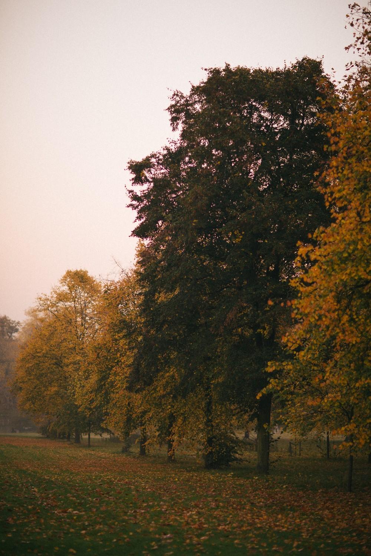 Autumn in London-29