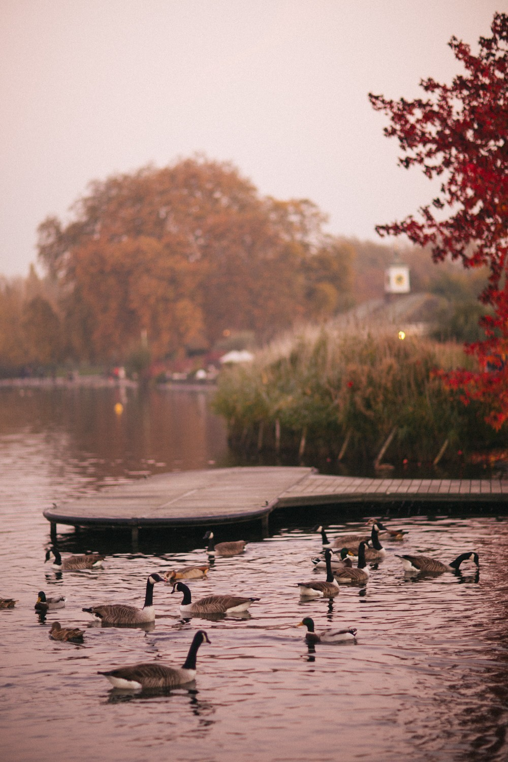 Autumn in London-36
