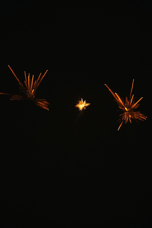 Bonfire attire-15