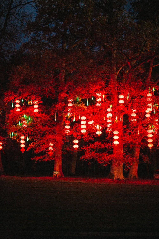 Longleat Festival of Light -28