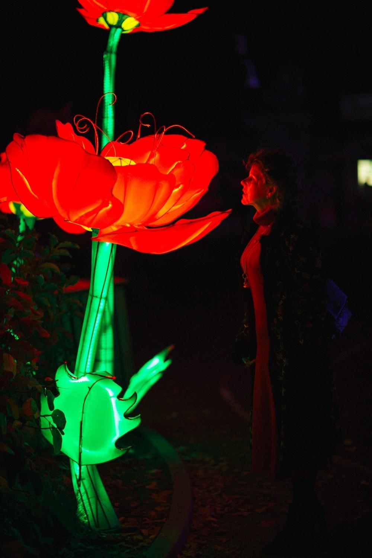 Longleat Festival of Light -37