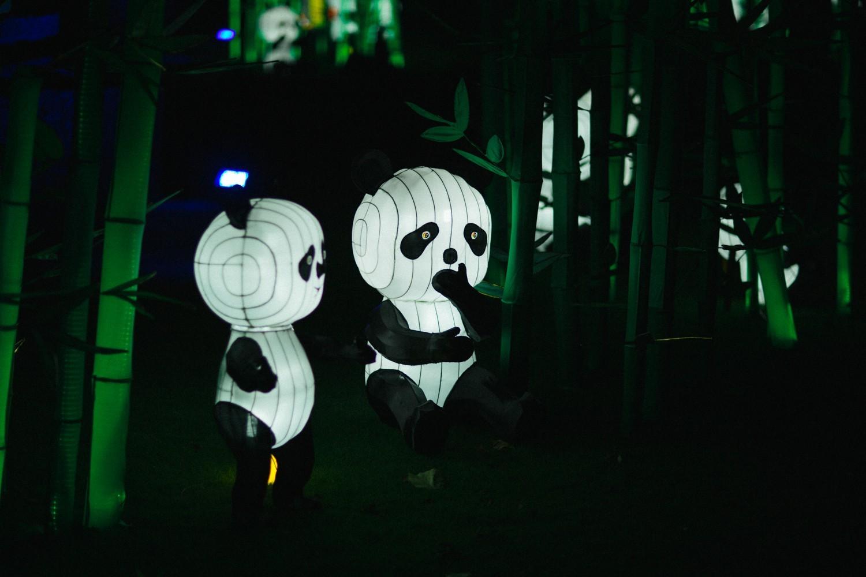 The Londoner » Longleat Festival of Lights