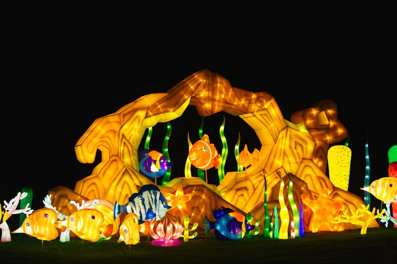 Longleat Festival of Light -47