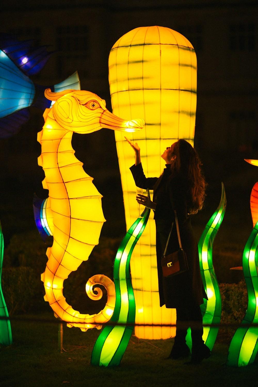 Longleat Festival of Light -48