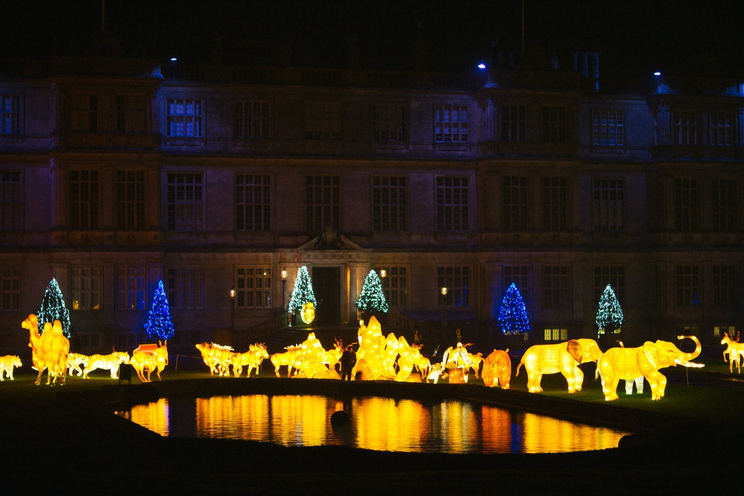 Longleat Festival of Light -50
