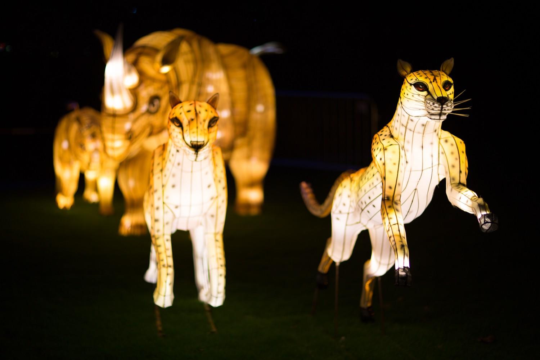 Longleat Festival of Light -51