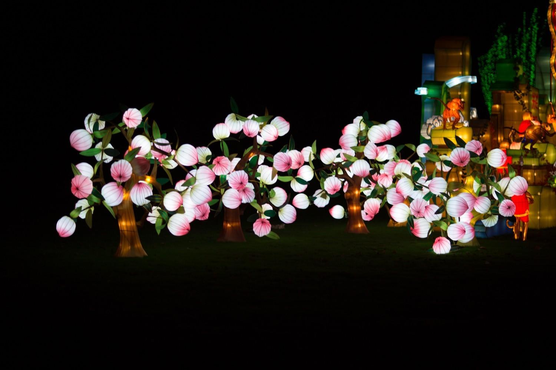 Longleat Festival of Light -57