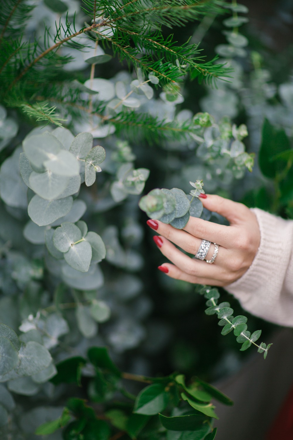 Eucalyptus and Silver Leaves Ring