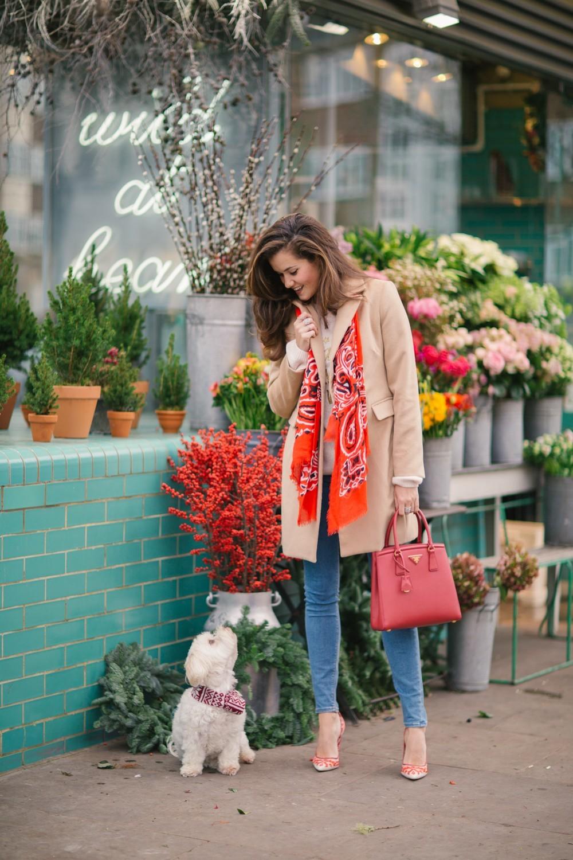 Festive Florist Notting Hill