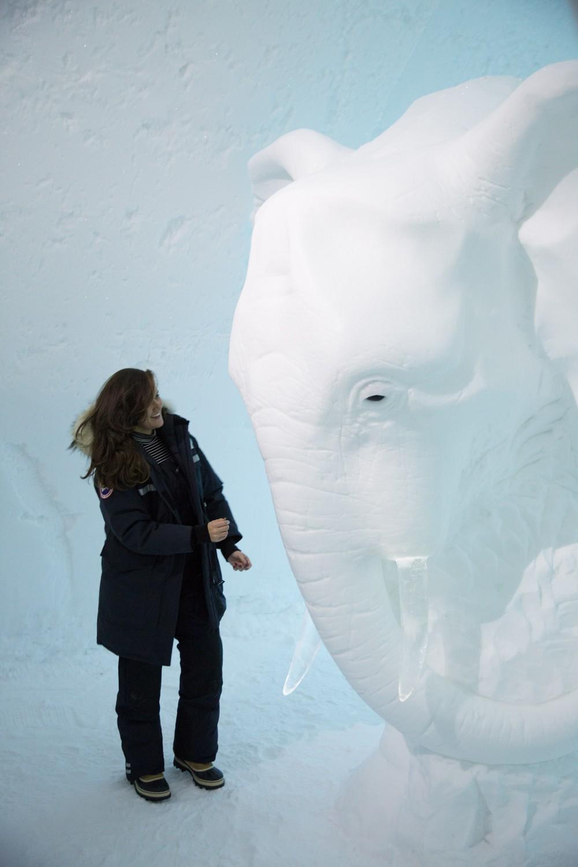 Ice Hotel Lapland-21