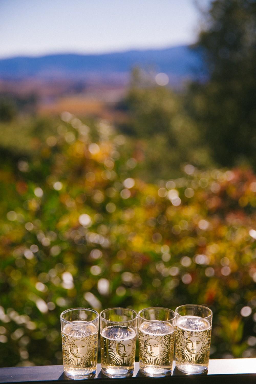 Napa Valley Wine Tasting-19