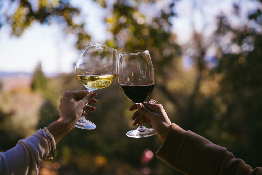 Napa Valley Wine Tasting-26