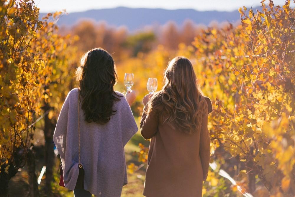 Napa Valley Wine Tasting-42