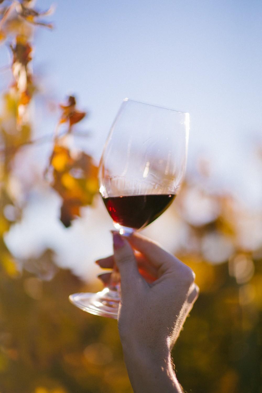 Napa Valley Wine Tasting-45
