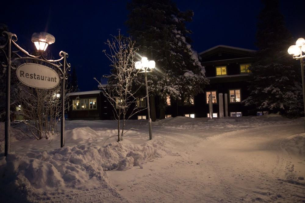 Husky Sledding Lapland-1
